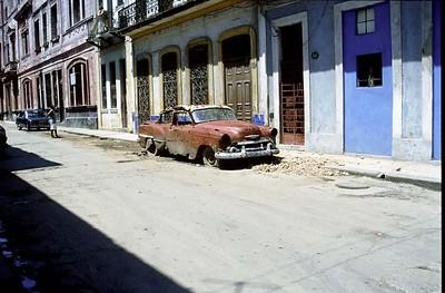 Cuban fossil