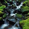 Soleduck Tributary, Olympic National Park, Washington