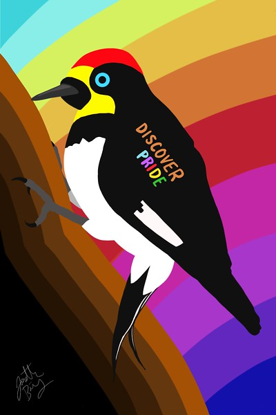 Discover Pride, Digital, 2021