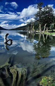 Escondido en el lago