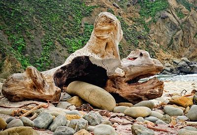 Paredolia Driftwood II