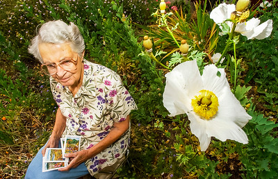 D062006_Flower Seed Book 2