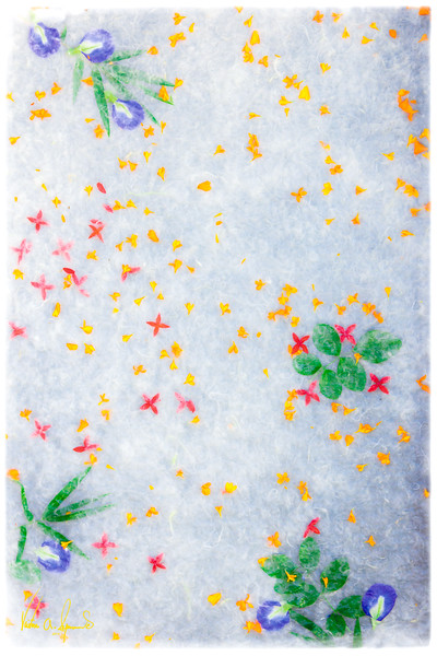"""FLOWERS IN RICE PAPER"""