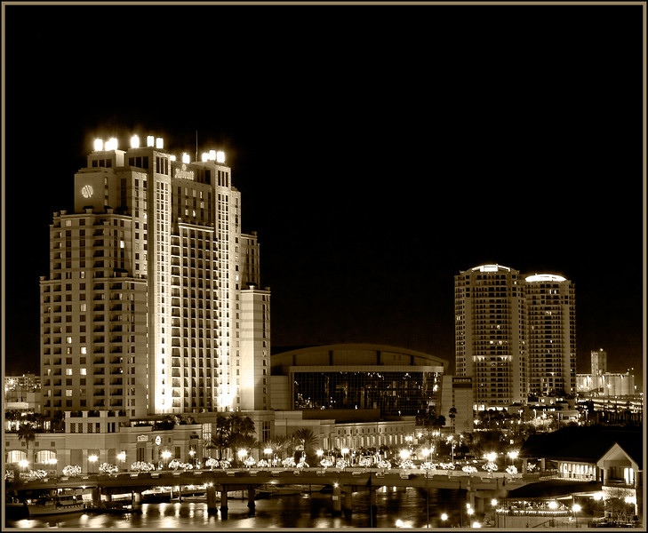 TAMPA SKYLINE AT NIGHT