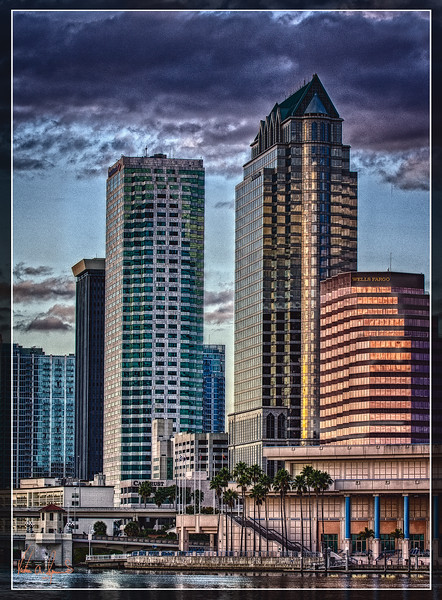 """""""A JANUARY NIGHT IN TAMPA"""""""
