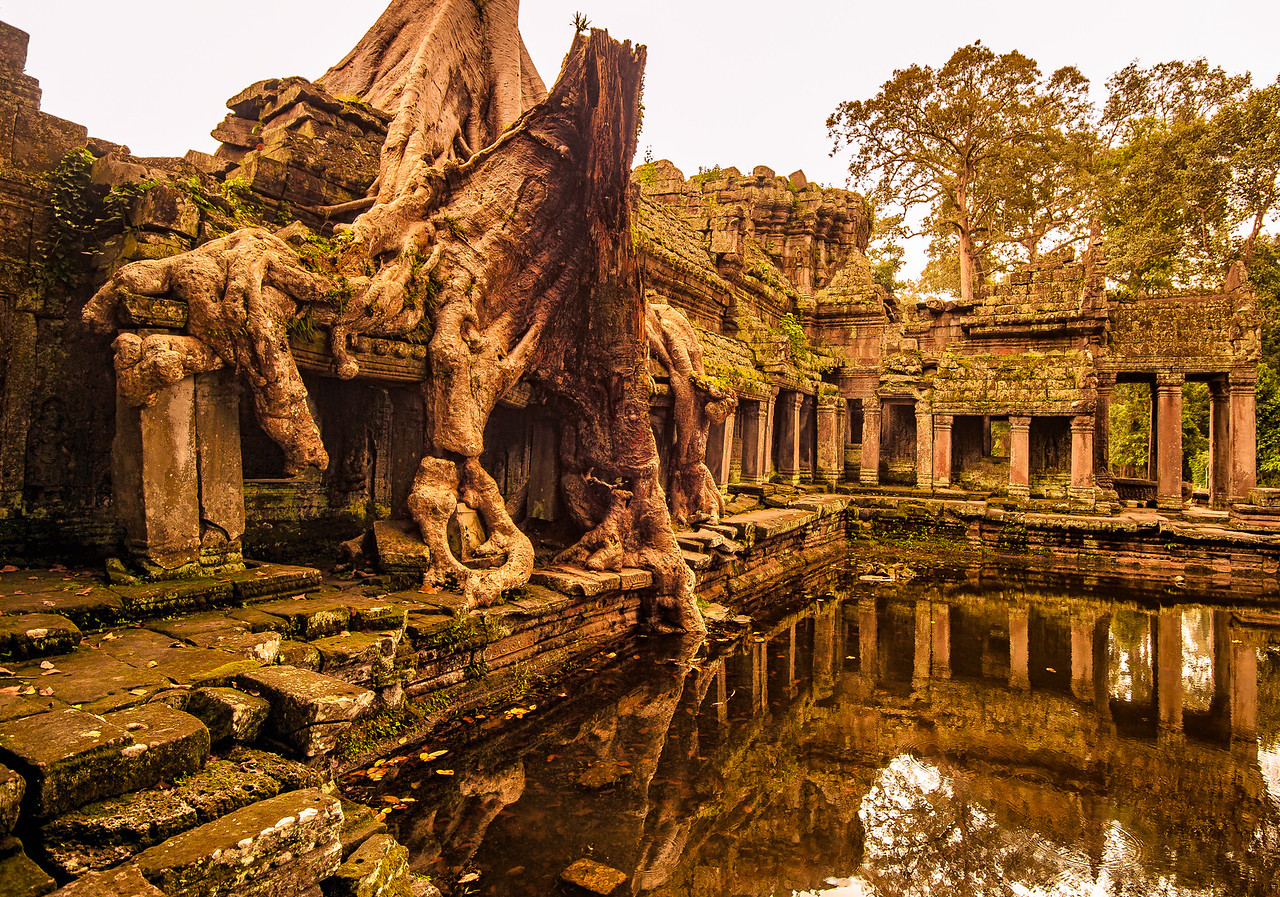 Earth reclaims the temple walls at Preah Kahn, in Siem Reap, Cambodia