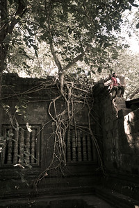 girl and tree and ruins