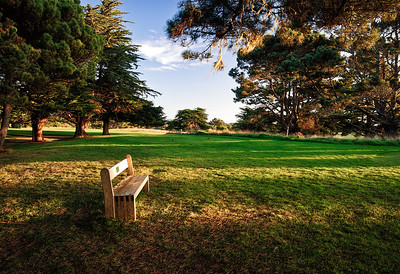 Park Bench and Golf Course, Sea Ranch, California