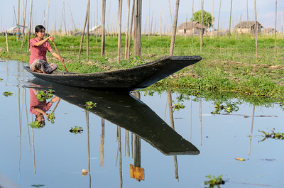 Girl rowing traditonal boat past floating gardens.