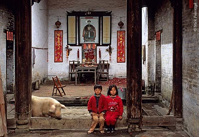 [CHINA.GUANGDONG 25.194] 'Temple playground.' Children and animals have free acces to this temple in Gaofeng, a village near Huaji. On the temple wall an imperial official exhorts the villagers to be proud of their country and make it strong. Photo Mick Palarczyk.