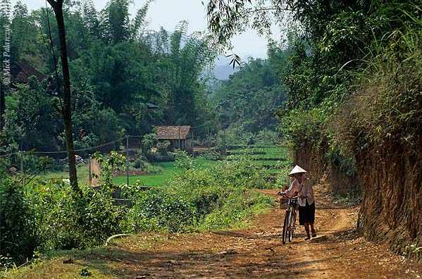 [VIETNAM.NORTH 21.317] 'Valley near So'n La.'	 Valley with rice fields southwest of So'n La. Photo Mick Palarczyk.