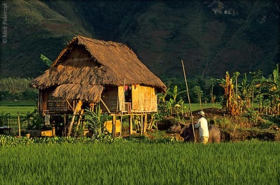 [VIETNAM.NORTH 21.263] 'Stilted house.' A family of the White Thái mountain tribe lives in this stilted house at Lac Village near Mai Châu. Photo Mick Palarczyk.