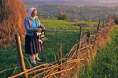 [ROMANIA.MARAMURES 23.655] 'Warm feet.' Warmed by 'opinchi', shoes made after a medieval design, shepherd Ileana Petran is braiding a new belt for her shoulder bag. Photo Mick Palarczyk.
