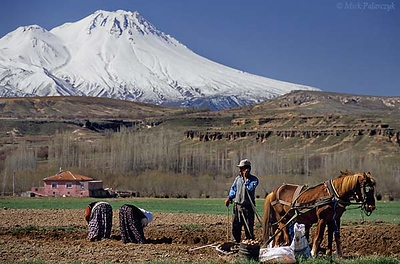 [TURKEY.CENTRAL 26940 'Phone call under the volcano.'  	Near the Cappadocian village of Selime, southeast of Aksaray, a farmer takes a break from plowing his field, while two women are gathering potatoes that were hidden in the soil. In the background, covered by spring snow, loom the slopes the Hasan Dag volcano. Photo Mick Palarczyk.