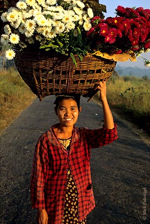 [BURMA 24.753] 'Carrying flowers.'	 North of Taungoo a woman is on her way to sell flowers at the market. Photo Mick Palarczyk.