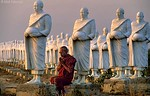<h4>[BURMA 24.737] <br>'Meditating monk.'</h4> Surrounded by his petrified brothers, a monk is meditating in the last sun-rays of the day at Zay Ta Won Monastery, north of Thawatti. Photo Mick Palarczyk.