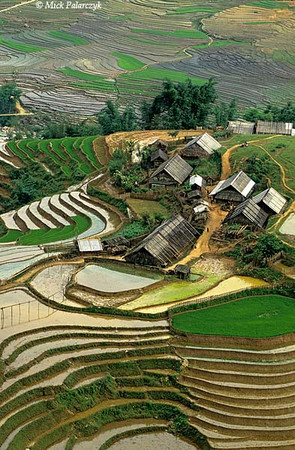 [VIETNAM.NORTH 21.463] 'Village in Muong Hoa Valley.' Village in the terraced landscape of the Muong Hoa Valley east of Sapa. Photo Mick Palarczyk