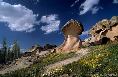 [TURKEY.CENTRAL 26903 'Melting mushroom.'  	This mushroom-shape rock, eroded from soft volcanic tuff, seems to be melting under the heat of the Turkish sun.  The strange rock formation can be found near Acik Saray, a rock-cut monastery south of the Cappadocian town of Gülsehir. Photo Mick Palarczyk.