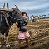 Young girl helps her father plough the field next to U Bein Bridge, in Myanmar