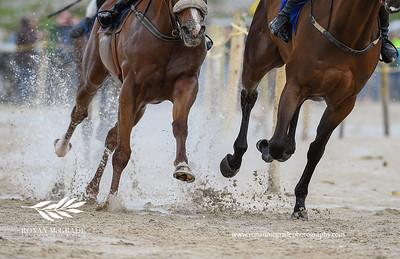 Omey Races 2016 24
