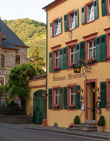 Vineyard view in Cochem, Germany