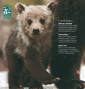 Back cover of National Wildlife Federation Magazine