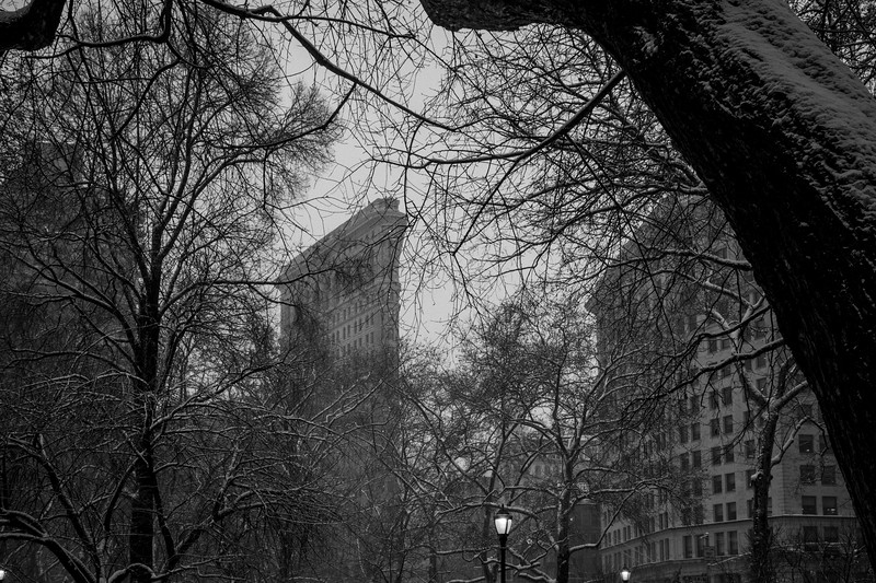 Flatiron from Sherman Square