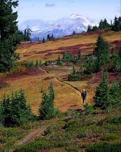 Pacific Crest Trail II
