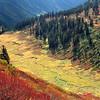 Meander Meadows Autumn