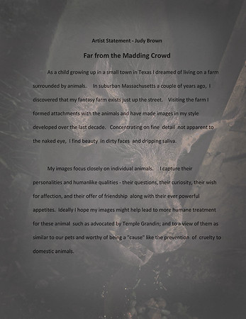 """""""Far from the Madding Crowd"""" Artist's Statement"""