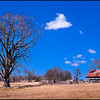 2016-01-27_Tree&Barn