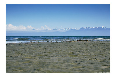 Just Another Metchosin Beach