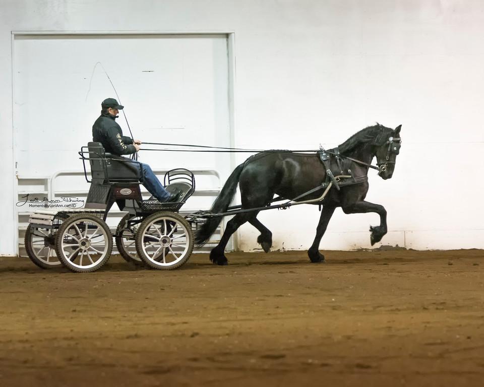Marije Zarina  (Tonjes 459 Sport x Doaitsen 420) with Alfons van Proosdij