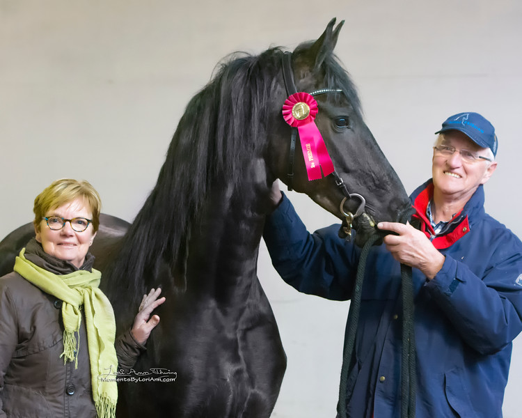 New ster mare Marije Zarina  (Tonjes 459 Sport x Doaitsen 420) with owners Ted and Tina Vanderkooi