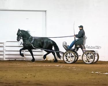 Martie KCF (Tonjes 459 Sport x Jasper 366) with Alfons van Proosdij