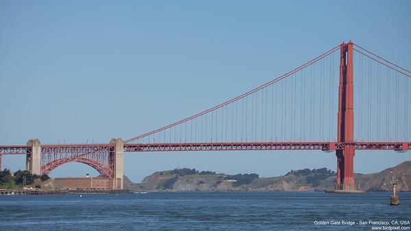 Golden Gate Bridge - San Francisco, CA, USA