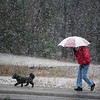 Walking the Dog in Snow, Tyler TX 2008-03-07