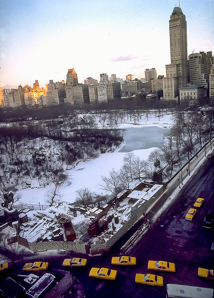 Taxi-Fish Swimming Upstream Into Central Park, January 1972