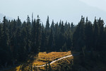 Hurricane Ridge, Olympic National Park, WA USA