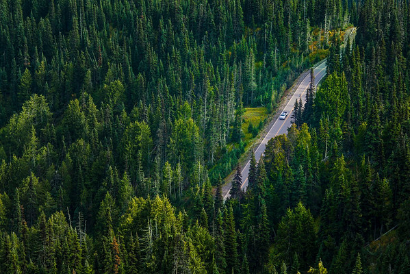 Pickup truck on remote highway in forested area, Hurricane Ridge, Olympic National Park, WA USA