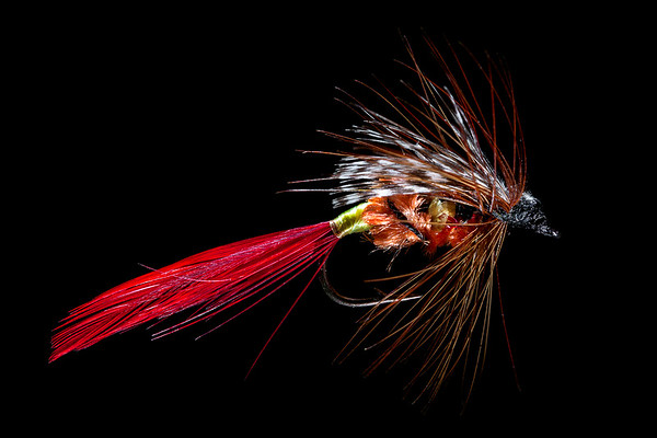 Fly Tying - Lure