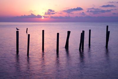 The Peaceful Sunrise
