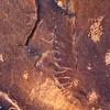 Fremont petroglyphs, Utah