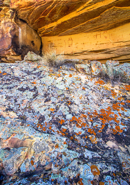 Lichen and Fremont pictographs, Utah