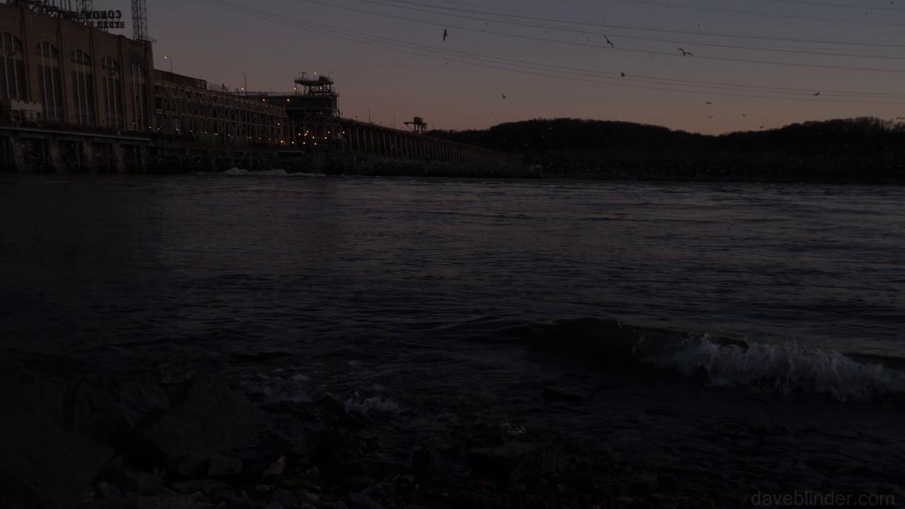 Conowingo Bald Eagles in Slow Motion