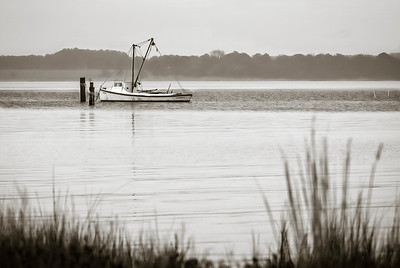 Back River, Poquoson Virginia