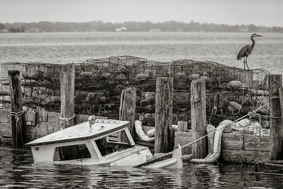 Messick Point Poquoson Virginia