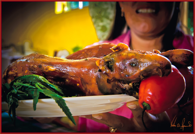 """GUINEA PIGS FOR LUNCH"" - HOME HOSTED LUNCH IN THE SACRED VALLEY IN PERU ON NOVEMBER 15, 2011"