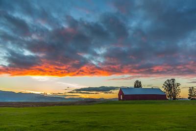 Red Barn Series, Petaluma, Ca