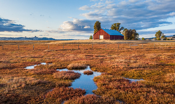 Red Barn from Marsh, Petaluma Ca